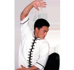 Kung Fu Tai Chi Top 100% Cotton Design