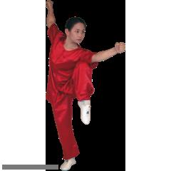 Traditional Short Sleeve 100% Silk Kung Fu Uniform