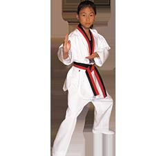 Taekwondo Poom Do Bok Martial Arts Uniform