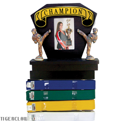 Deluxe Martial Arts Picture Frame & Rank Belt Display