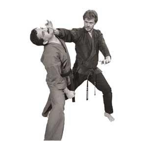 When Kenpo Strikes Series DVD Titles with Master Larry Tatum
