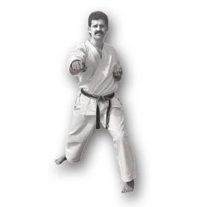 David Deaton's Wado Ryu Karate DVD Series Titles