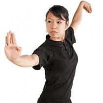 Oriental Henley Short Sleeve Shirt
