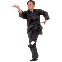 Traditional Kung Fu Uniform