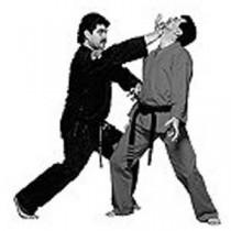 Master Tabatabai's American Kenpo Karate DVD Titles