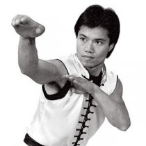 Master Tat Mau Wong's Choy Lay Fut Kung Fu DVD Series Titles