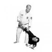 Budoshin Ju Jitsu DVD Series Titles