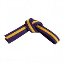 Gold or Black Striped Belts