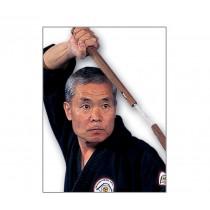 Nishiuchi's Traditional Okinawan Kobudo Weaponry DVD Series