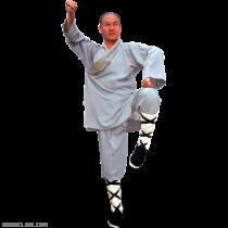 Kung Fu Shaolin Monk Robe