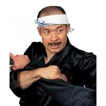 Grandmaster Shoto Tanemura's Samurai Jujutsu DVD Series Titles